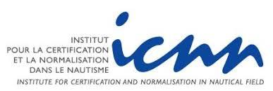 Logo ICNN